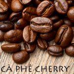 Cà phê Liberica là gì?