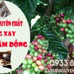 Cà phê nguyên chất Lâm Đồng