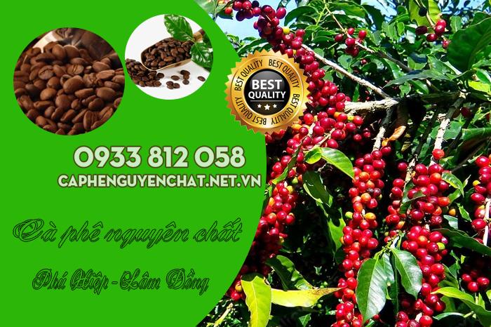 Cà phê nguyên chất Xã Phú Hiệp Lâm Đồng