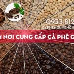 Tìm nơi cung cấp cà phê giá sỉ
