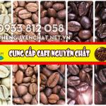 Cung cấp cafe nguyên chất
