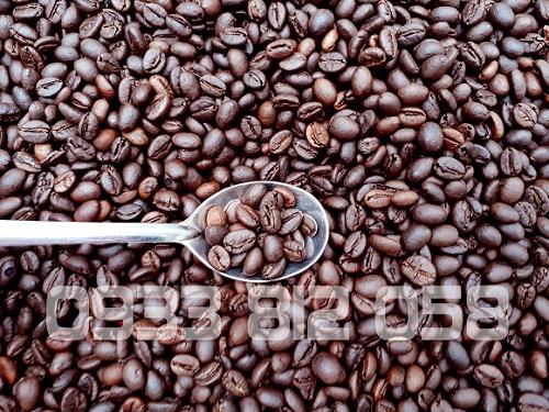 Cà phê nguyên chất Bảo Lộc