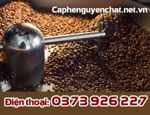 Cà phê hạt rang sẵn