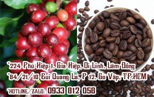 Mua cà phê hạt rang Tiền Giang