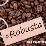Cà phê Robusta rang mộc