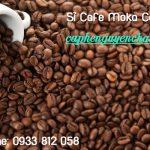 Cung cấp sỉ cà phê Moka Cầu Đất nguyên chất